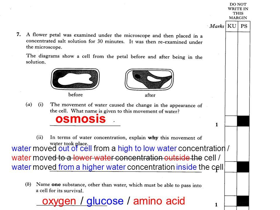 osmosis oxygen / glucose / amino acid