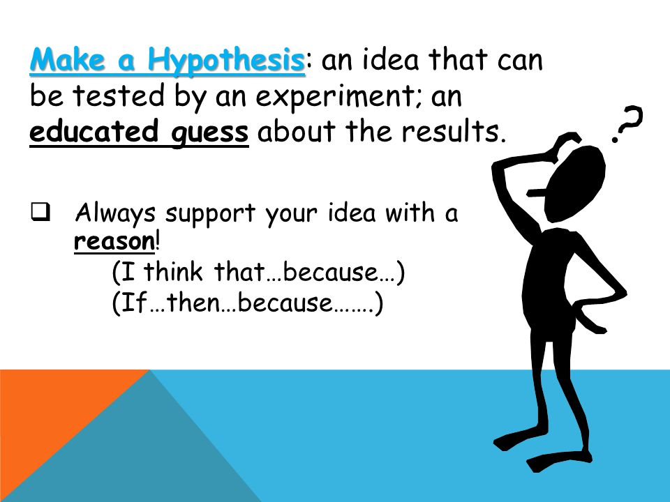Make a Hypothesis: an idea that can be tested by an experiment; an educated guess about the results.