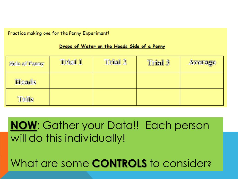 NOW: Gather your Data!! Each person will do this individually!