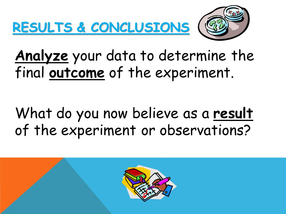 Analyze your data to determine the final outcome of the experiment.