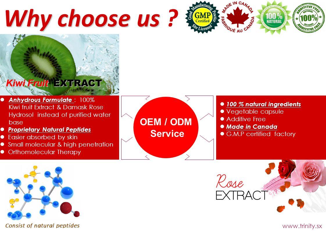 Why choose us OEM / ODM Service Kiwi Fruit EXTRACT