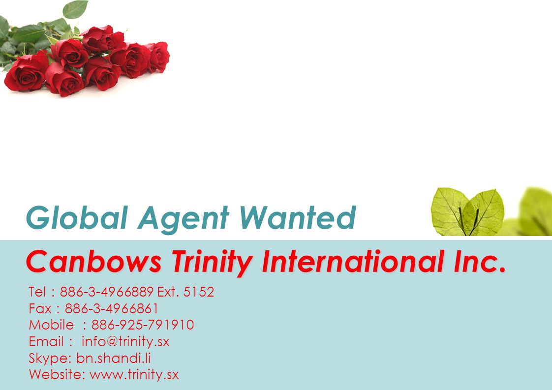 Global Agent Wanted Canbows Trinity International Inc.