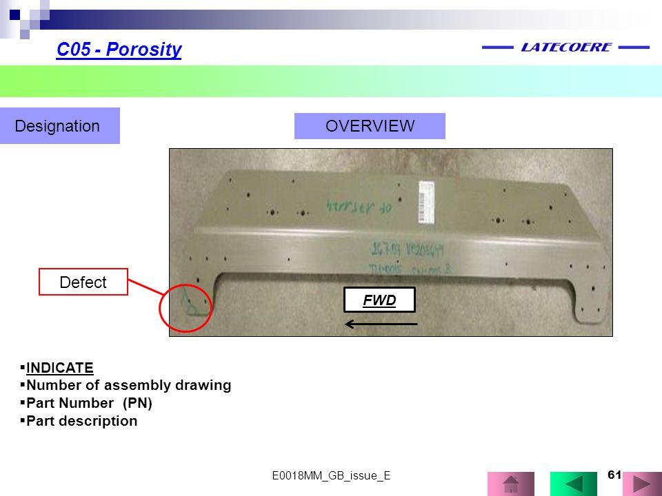 C05 - Porosity Designation OVERVIEW Defect FWD INDICATE