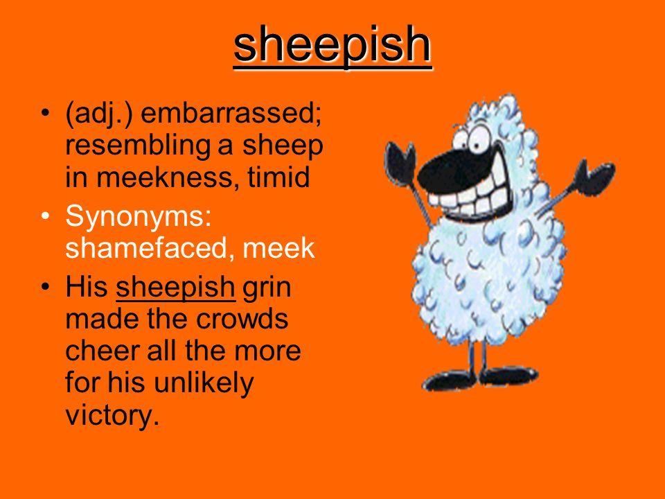 sheepish (adj.) embarrassed; resembling a sheep in meekness, timid