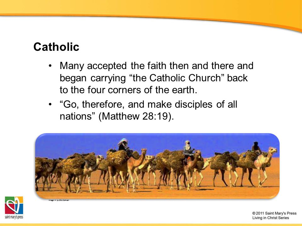 Catholic Many accepted the faith then and there and began carrying the Catholic Church back to the four corners of the earth.
