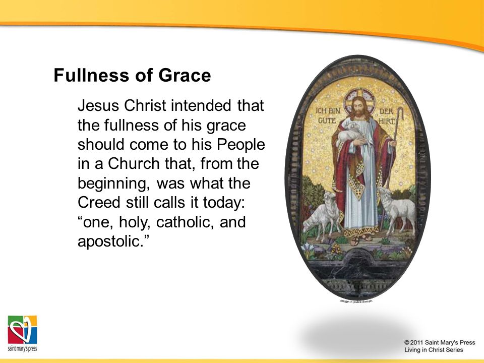 Fullness of Grace