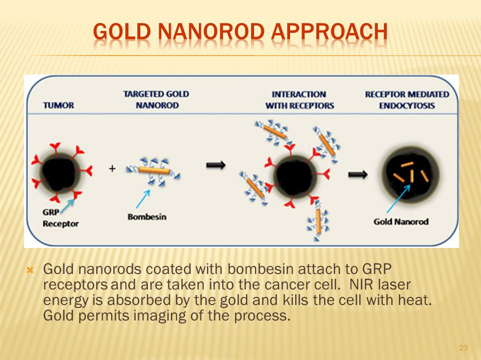 Gold Nanorod Approach