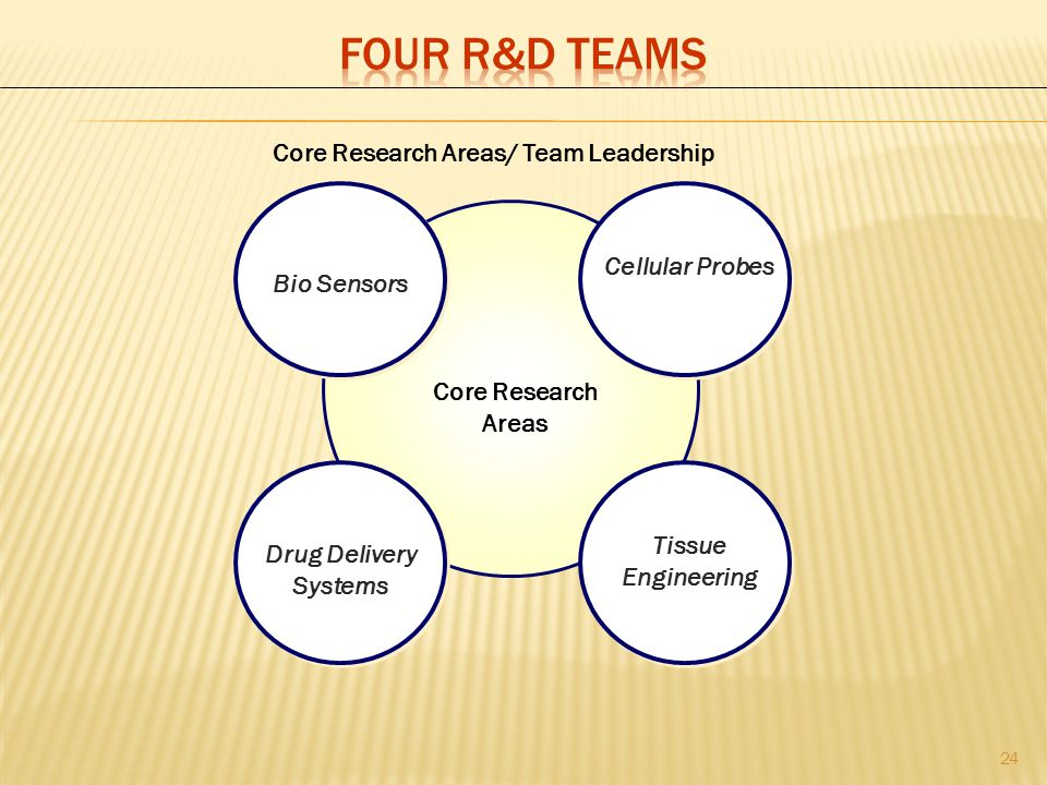 Core Research Areas/ Team Leadership