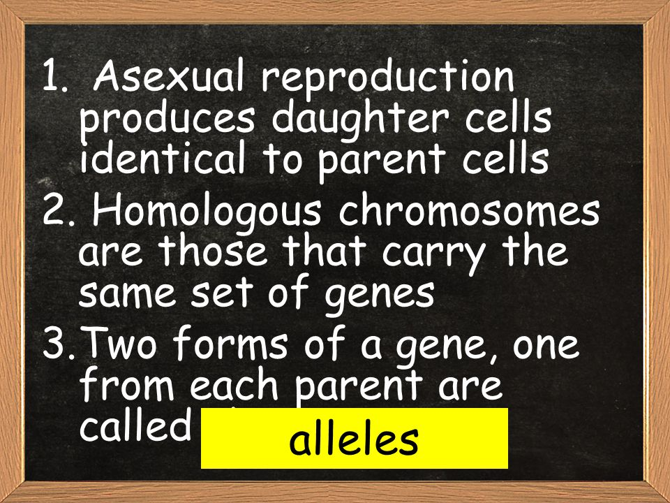 Asexual reproduction produces daughter cells identical to parent cells