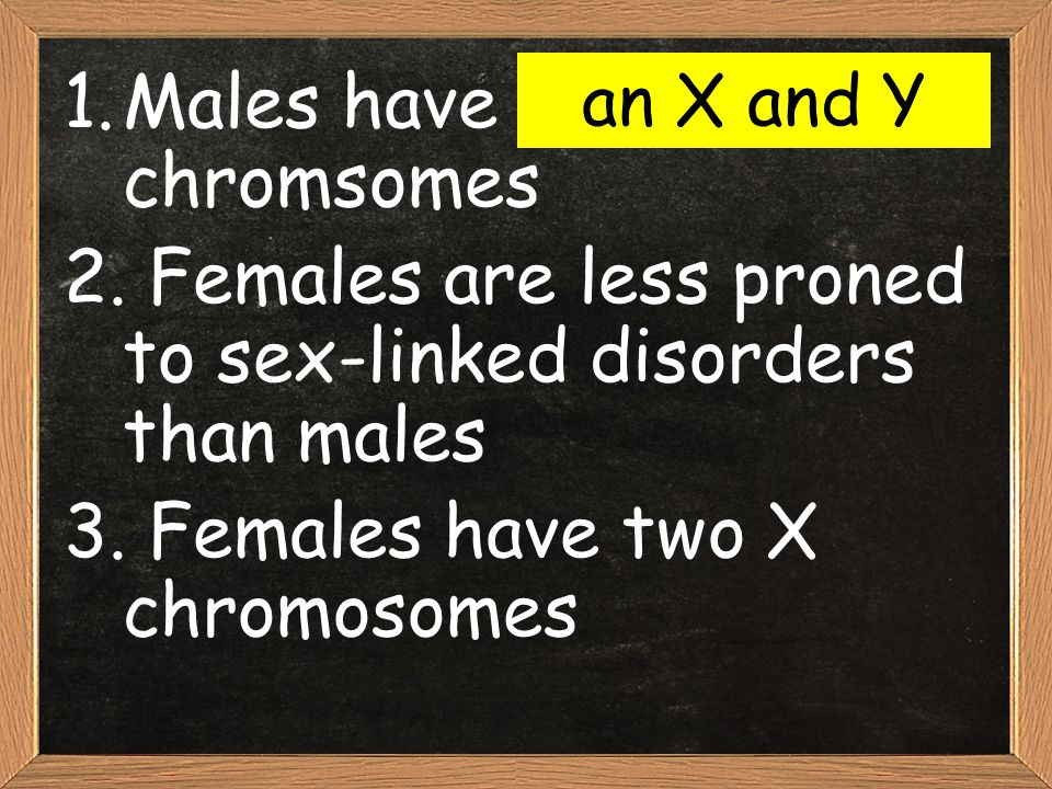 Males have two X chromsomes