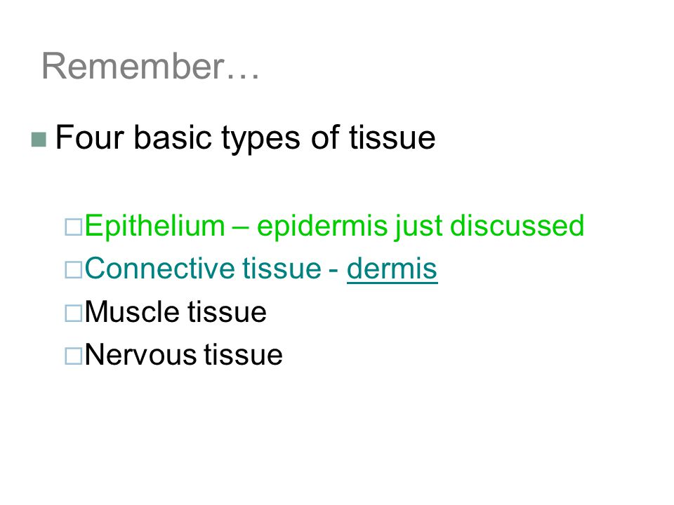 Remember… Four basic types of tissue