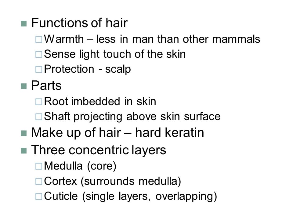 Make up of hair – hard keratin Three concentric layers
