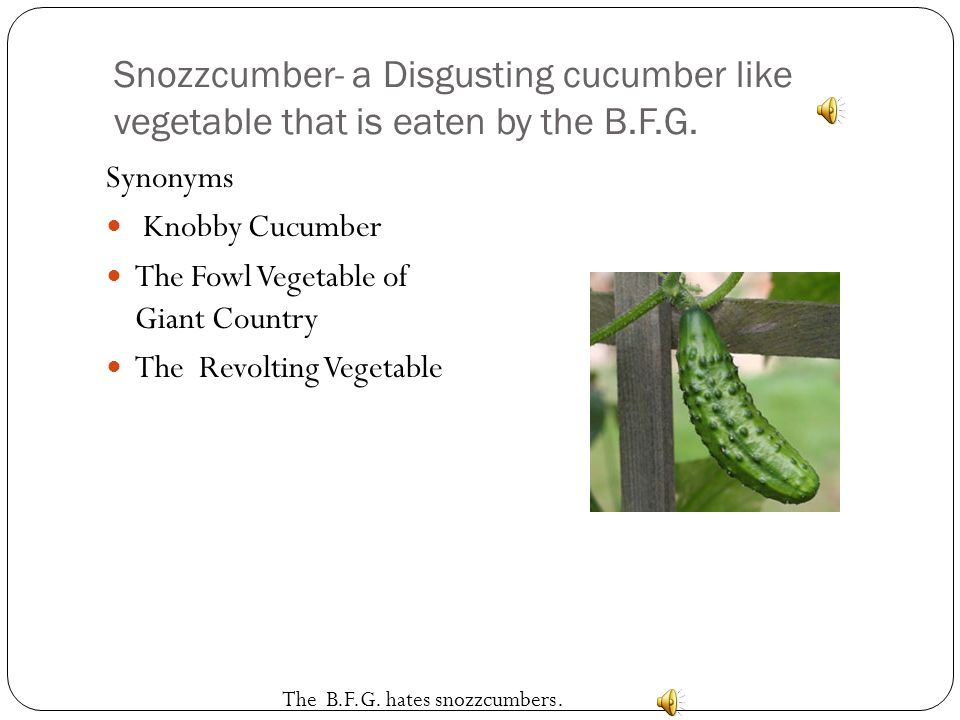 Snozzcumber- a Disgusting cucumber like vegetable that is eaten by the B.F.G.
