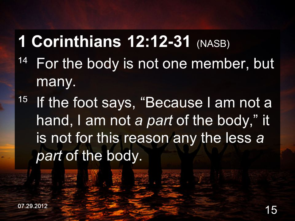 1 Corinthians 12:12-31 (NASB) 14 For the body is not one member, but many.