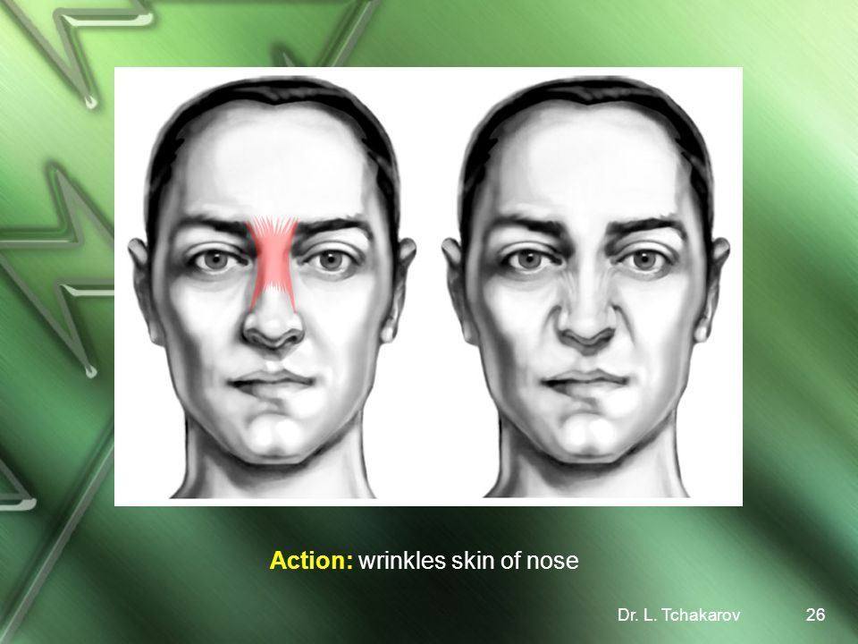 Action: wrinkles skin of nose