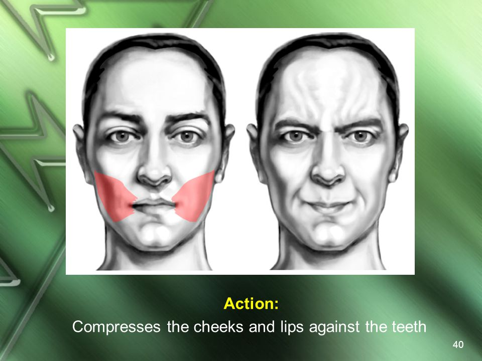 Action: Compresses the cheeks and lips against the teeth