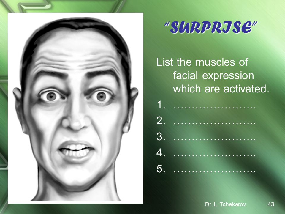 SURPRISE List the muscles of facial expression which are activated.