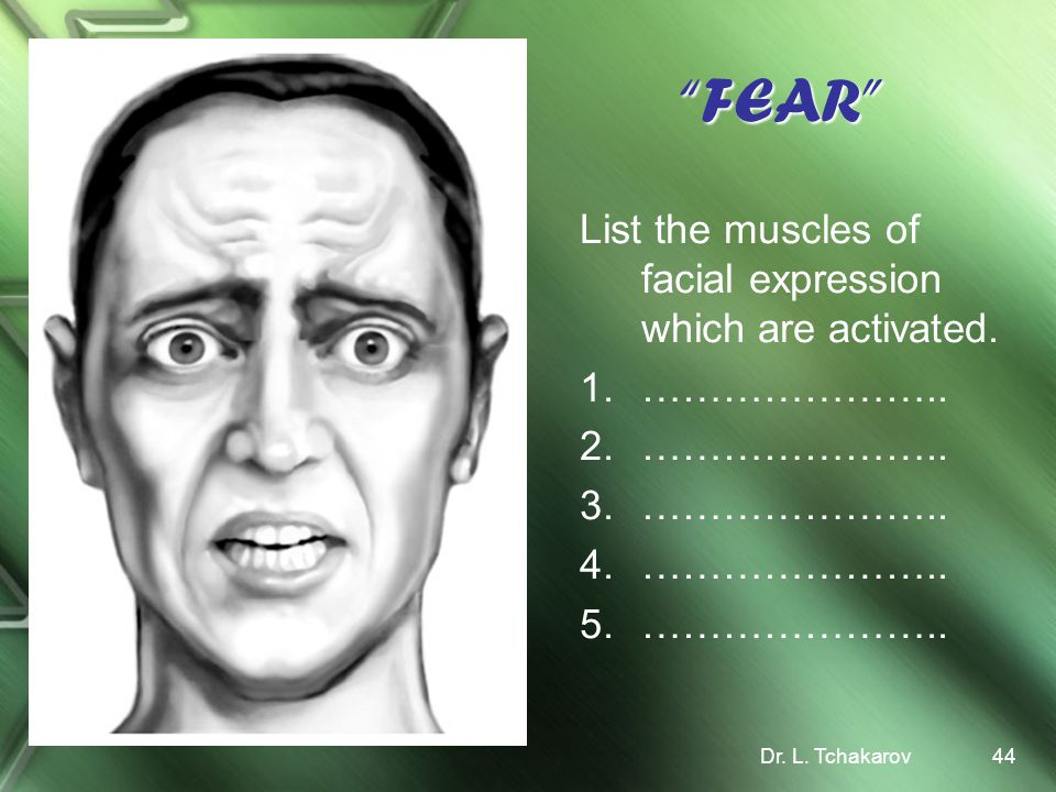 FEAR List the muscles of facial expression which are activated.