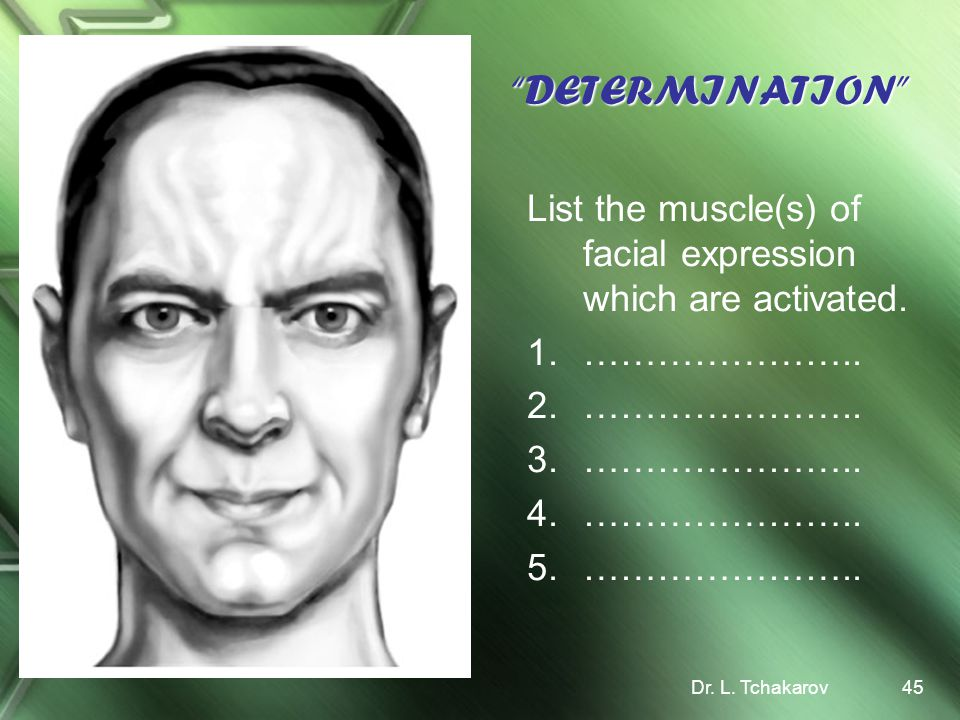 DETERMINATION List the muscle(s) of facial expression which are activated.