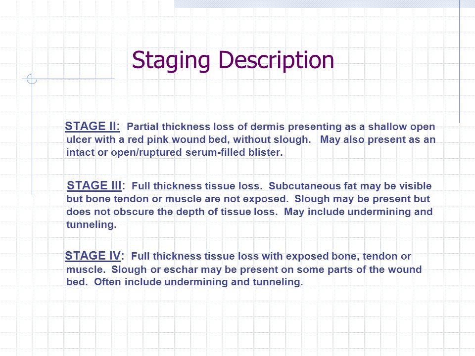 Staging Description
