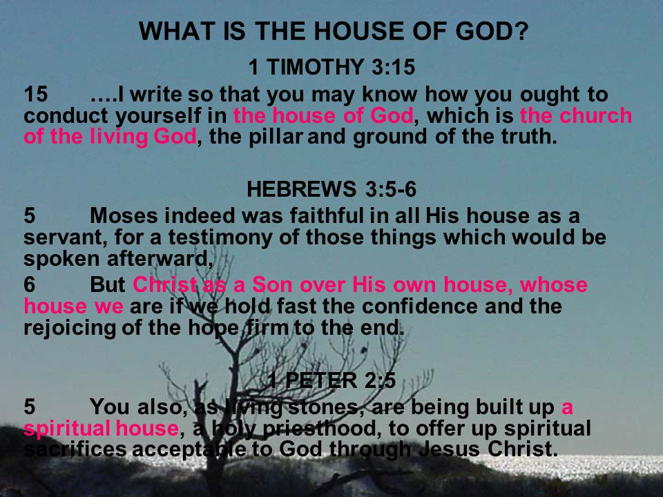 WHAT IS THE HOUSE OF GOD 1 TIMOTHY 3:15