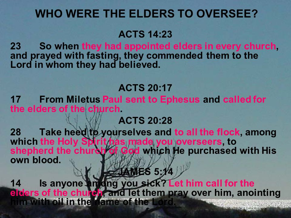 WHO WERE THE ELDERS TO OVERSEE