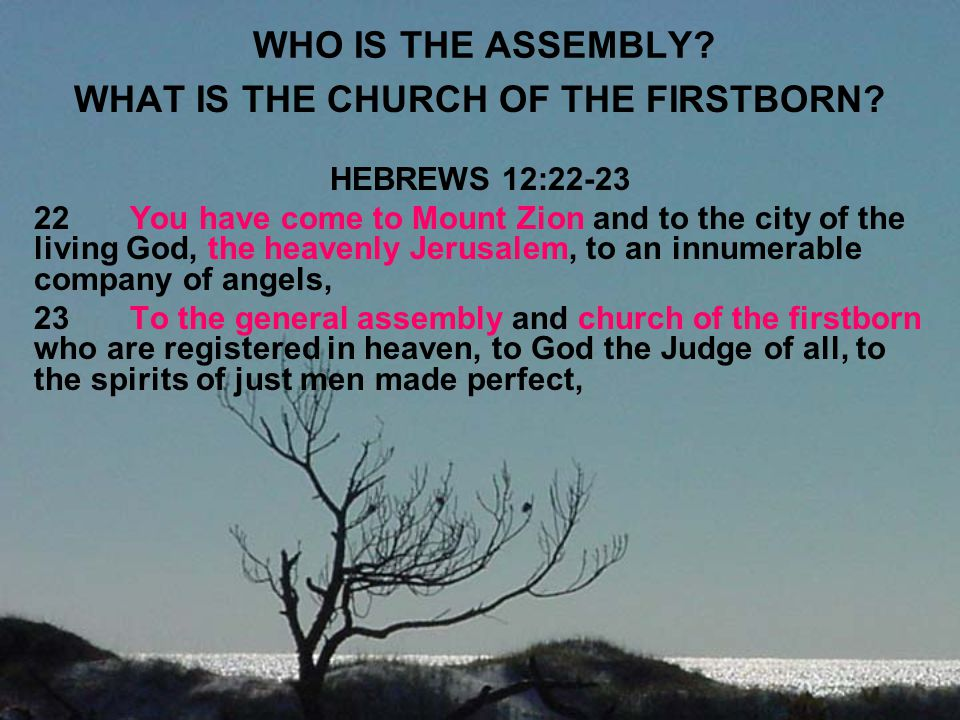 WHAT IS THE CHURCH OF THE FIRSTBORN