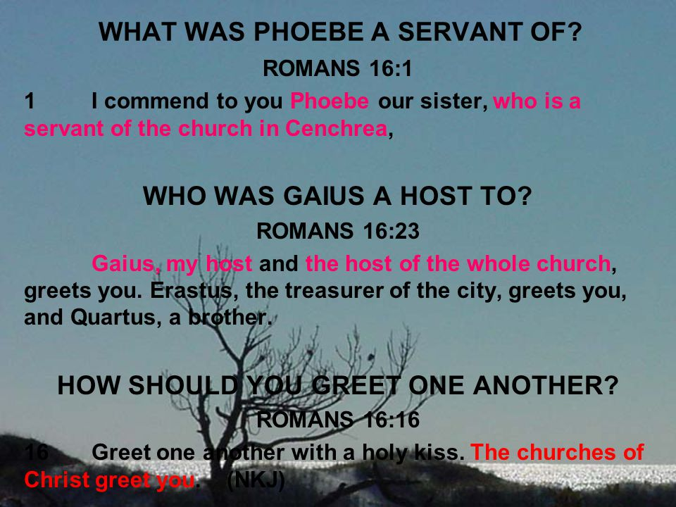 WHAT WAS PHOEBE A SERVANT OF
