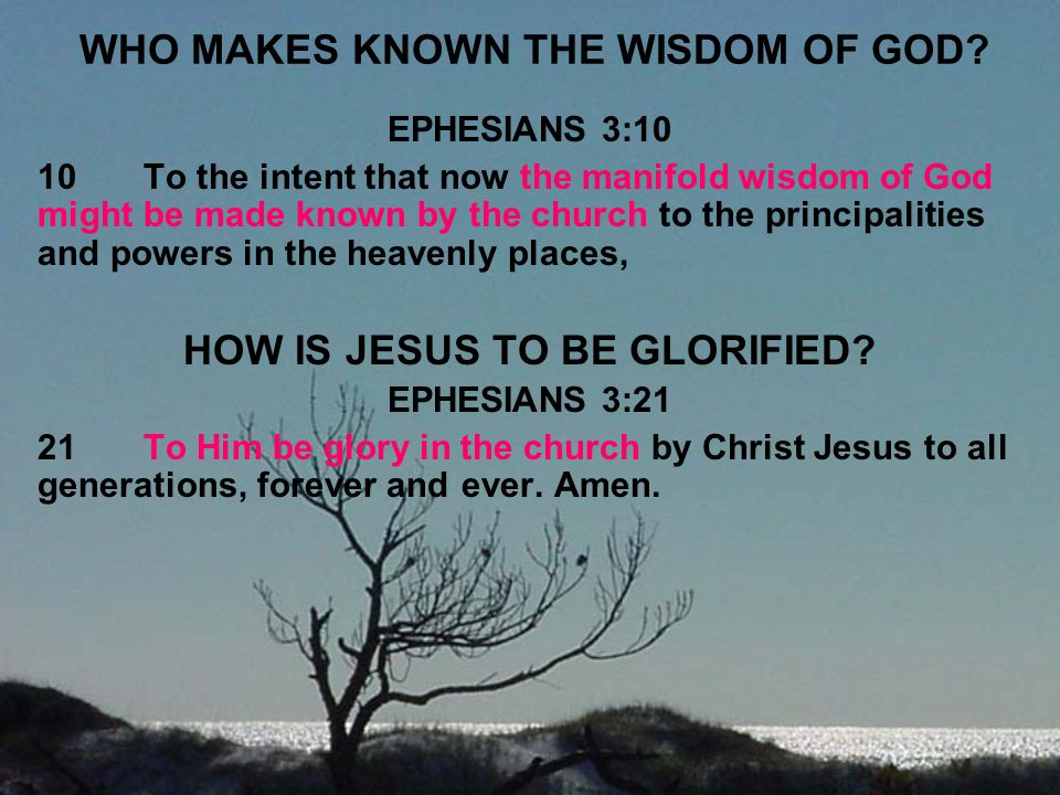 WHO MAKES KNOWN THE WISDOM OF GOD