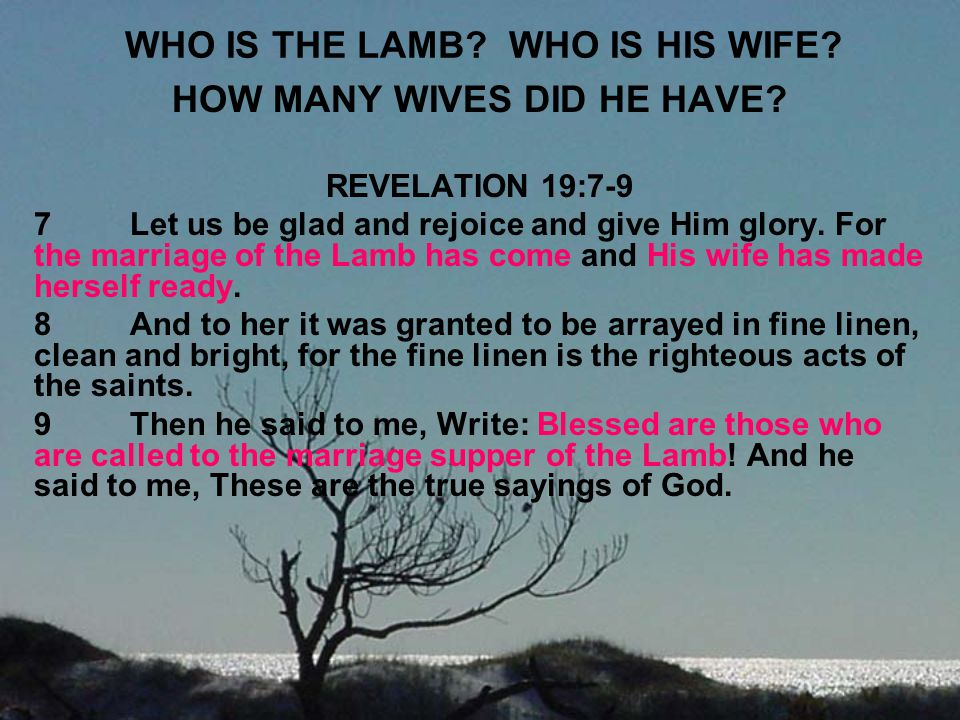WHO IS THE LAMB WHO IS HIS WIFE