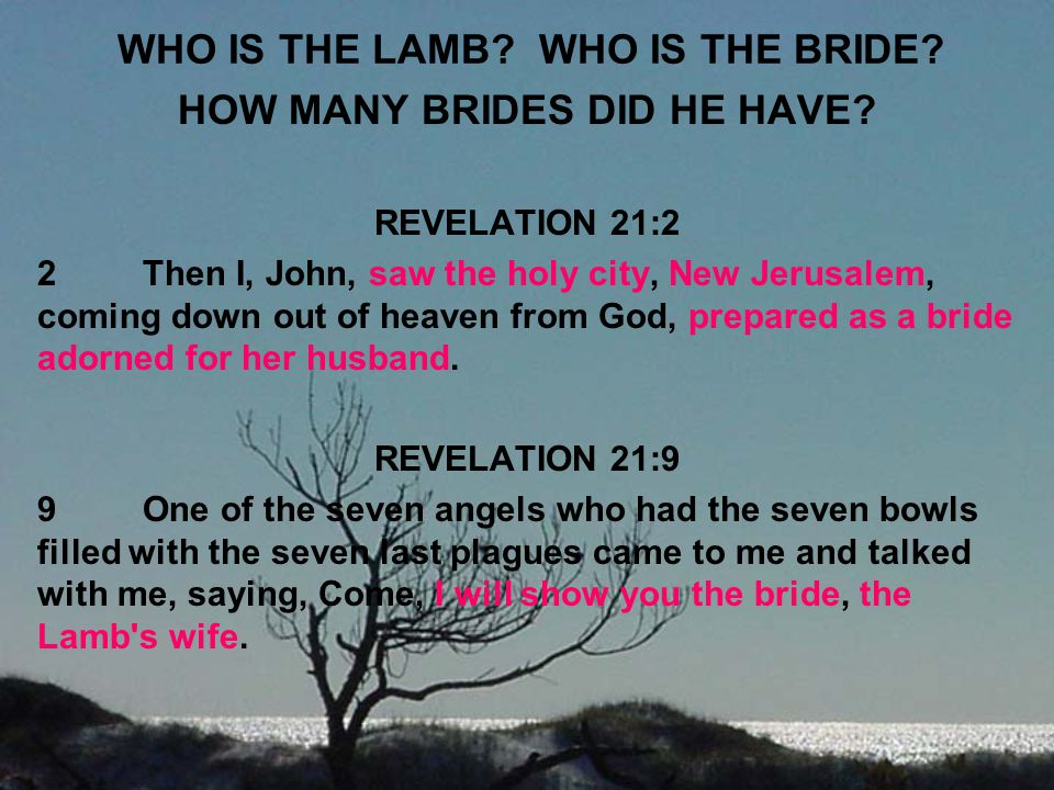 WHO IS THE LAMB WHO IS THE BRIDE