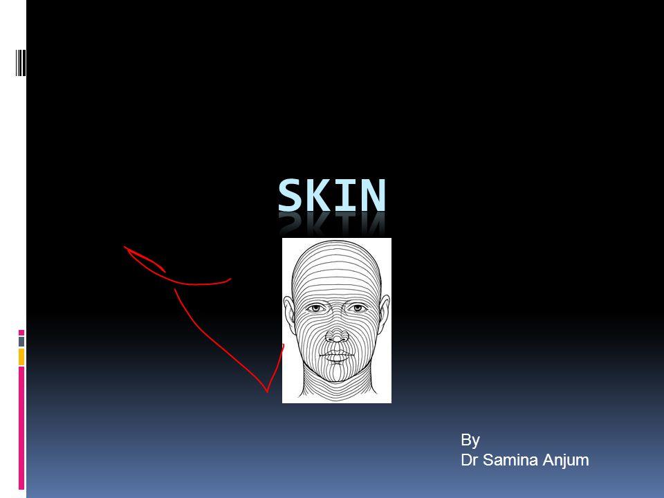 SKIN By Dr Samina Anjum