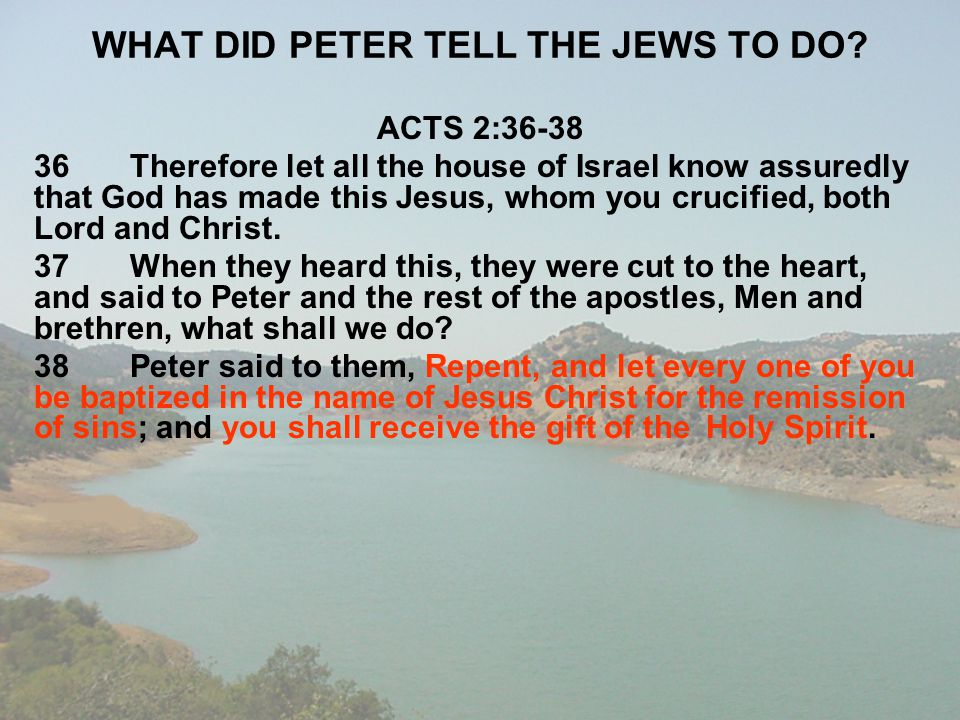 WHAT DID PETER TELL THE JEWS TO DO