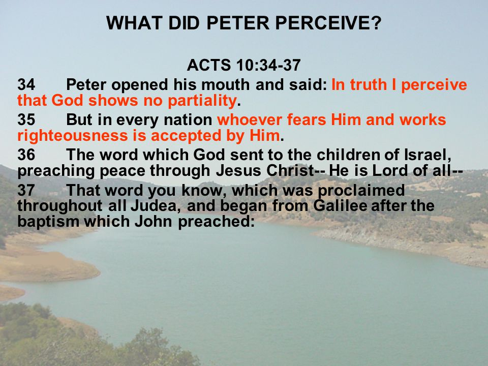 WHAT DID PETER PERCEIVE