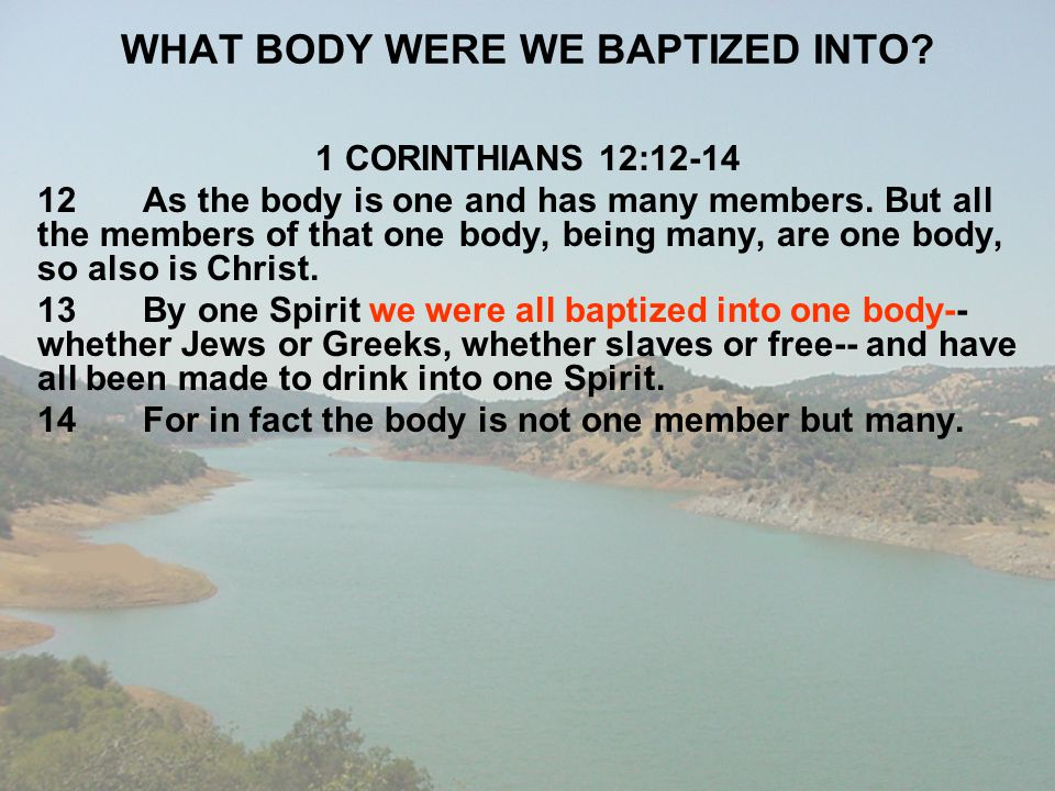 WHAT BODY WERE WE BAPTIZED INTO
