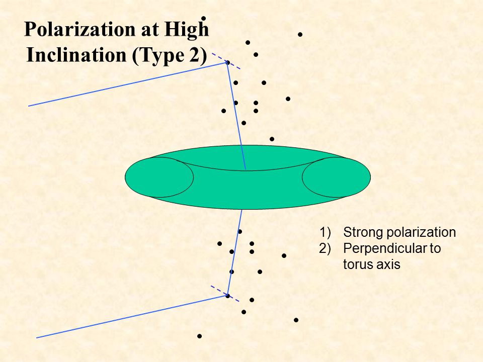 Polarization at High Inclination (Type 2)