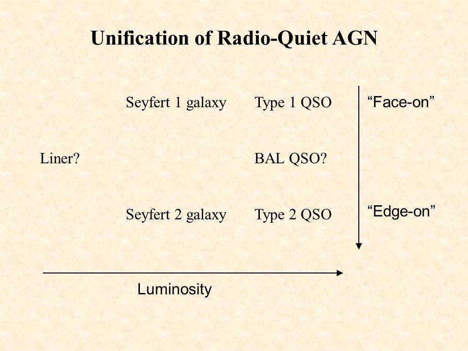 Unification of Radio-Quiet AGN