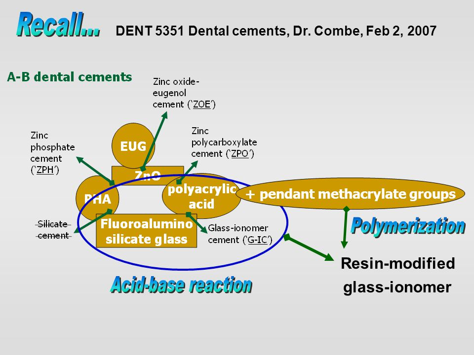 + pendant methacrylate groups