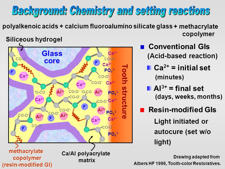 Background: Chemistry and setting reactions