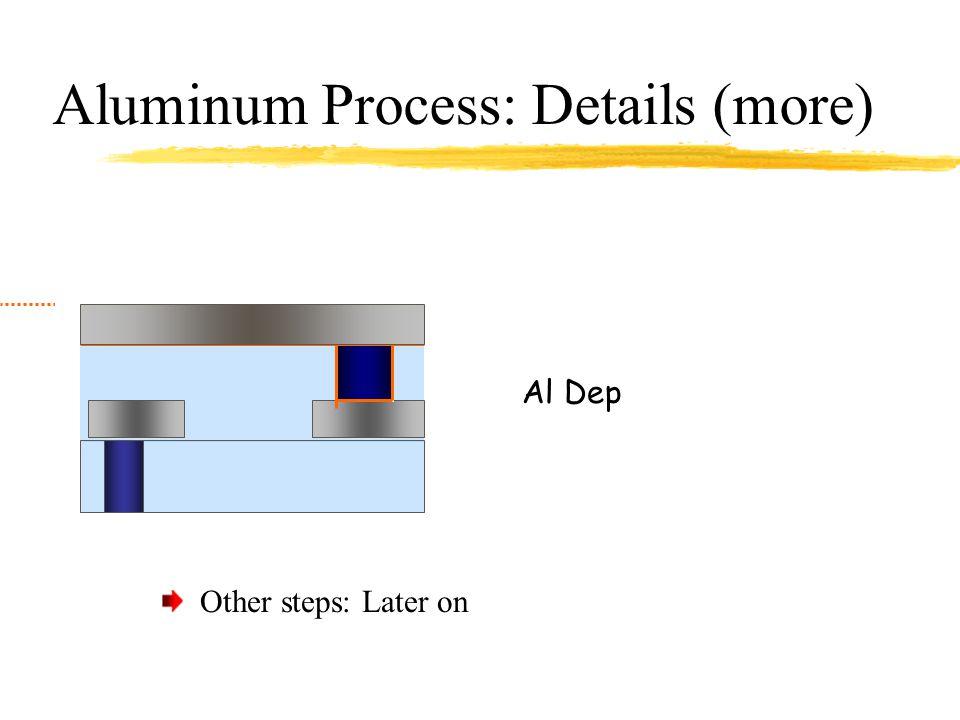 Aluminum Process: Details (more)