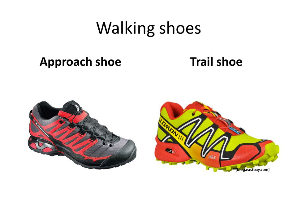 Walking shoes Approach shoe Trail shoe