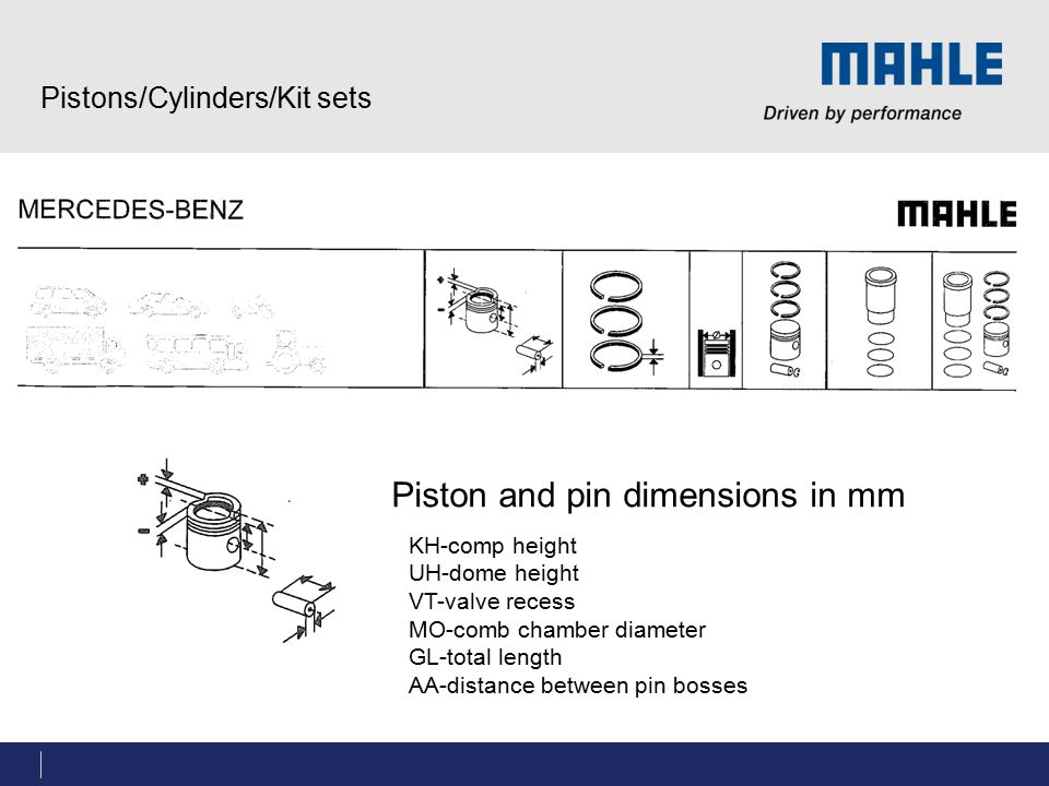 Pistons/Cylinders/Kit sets