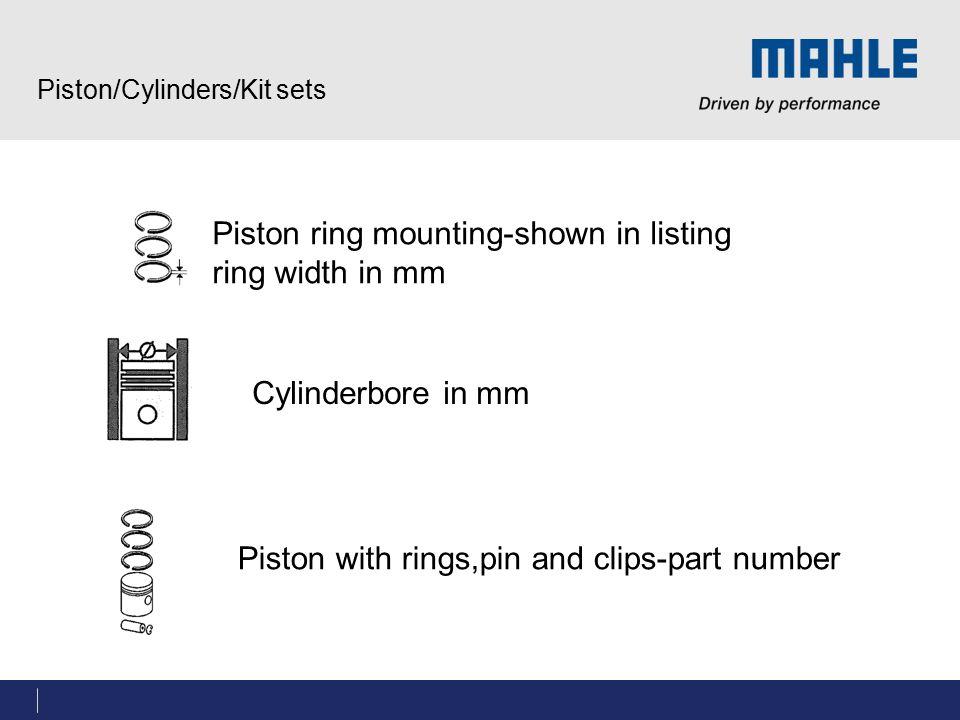 Piston/Cylinders/Kit sets