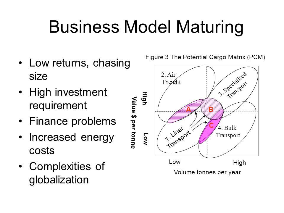 Business Model Maturing
