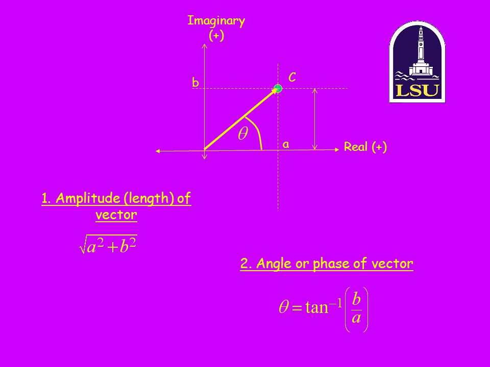 1. Amplitude (length) of vector