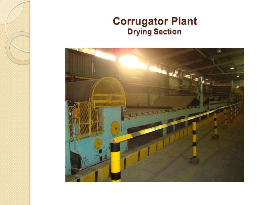 Corrugator Plant Drying Section
