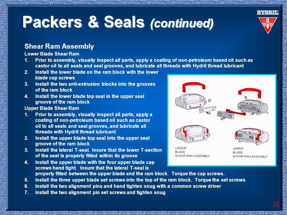 Packers & Seals (continued)