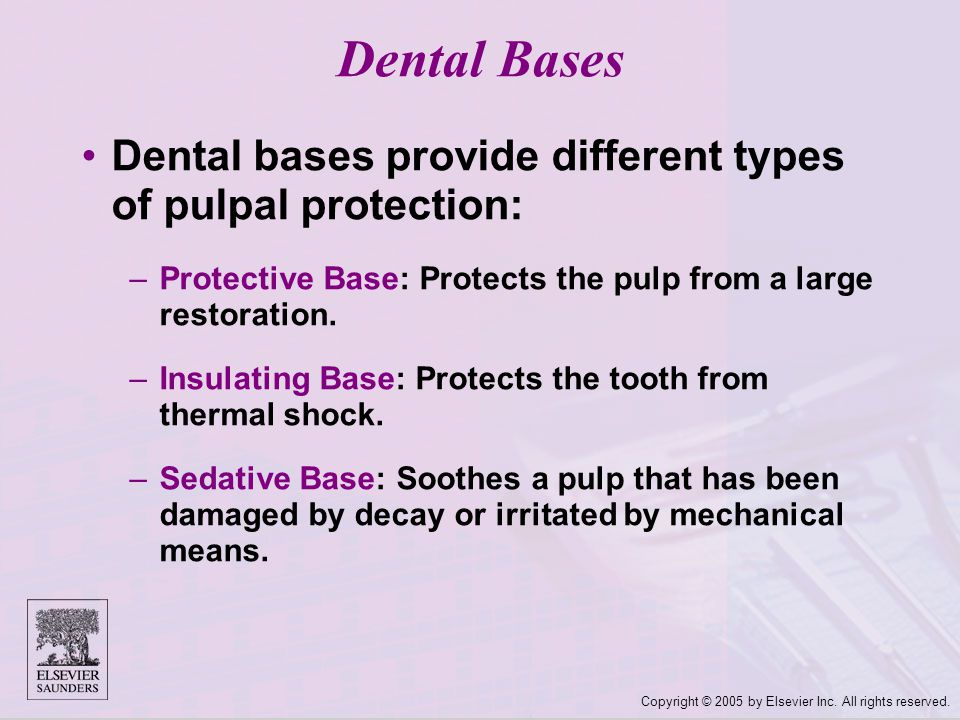 Dental Bases Dental bases provide different types of pulpal protection: Protective Base: Protects the pulp from a large restoration.