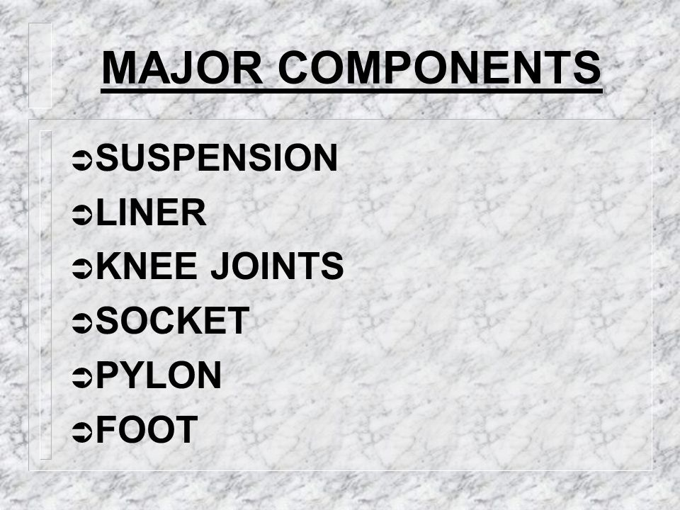 MAJOR COMPONENTS SUSPENSION LINER KNEE JOINTS SOCKET PYLON FOOT