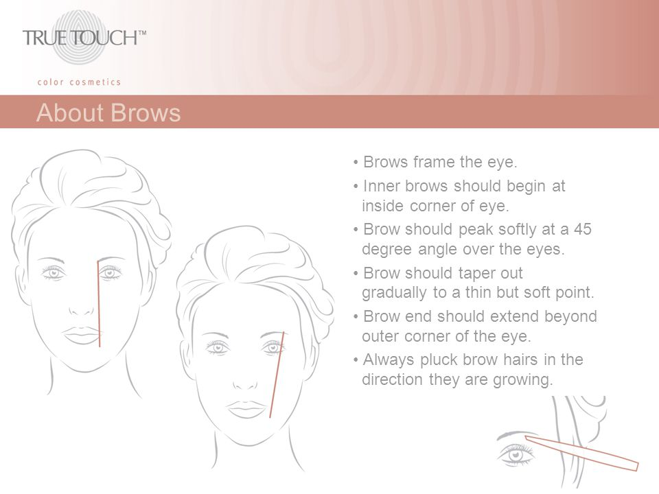 About Brows • Brows frame the eye.
